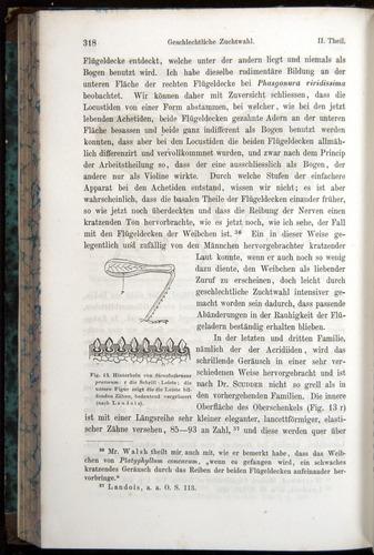 Image of Darwin-F1065.1-1871-00318