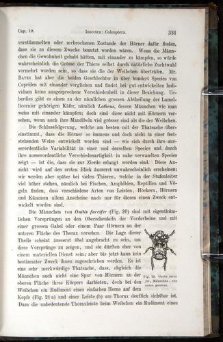 Image of Darwin-F1065.1-1871-00331