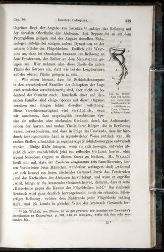 Image of Darwin-F1065.1-1871-00339