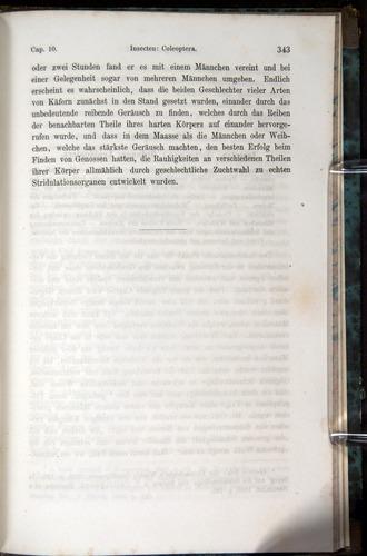 Image of Darwin-F1065.1-1871-00343