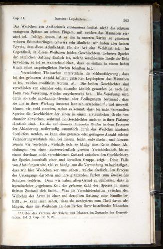 Image of Darwin-F1065.1-1871-00365