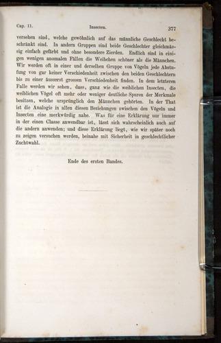 Image of Darwin-F1065.1-1871-00377