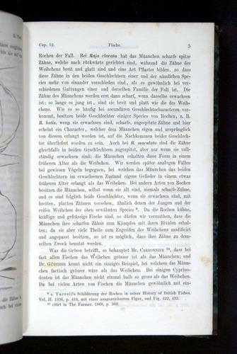Image of Darwin-F1065.2-1871-005