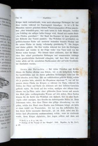 Image of Darwin-F1065.2-1871-021