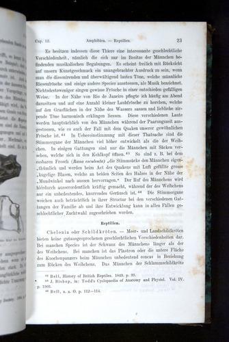 Image of Darwin-F1065.2-1871-023
