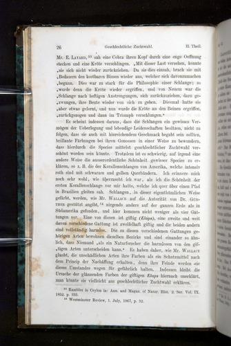 Image of Darwin-F1065.2-1871-026