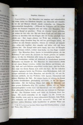 Image of Darwin-F1065.2-1871-027