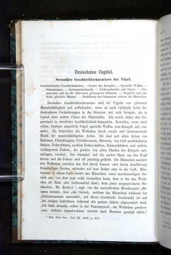 Image of Darwin-F1065.2-1871-032