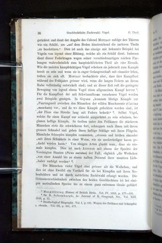 Image of Darwin-F1065.2-1871-036