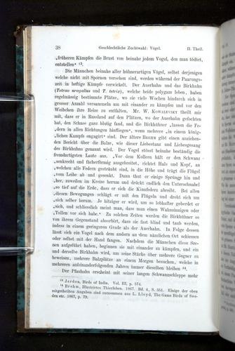 Image of Darwin-F1065.2-1871-038