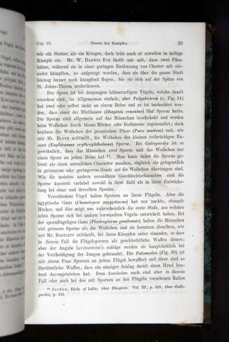 Image of Darwin-F1065.2-1871-039