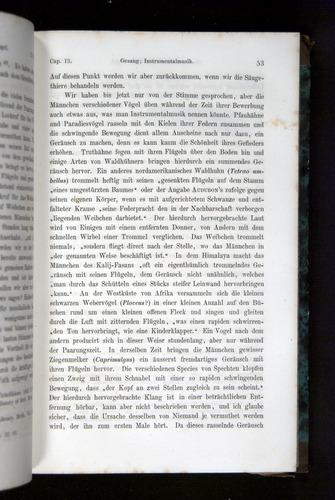Image of Darwin-F1065.2-1871-053