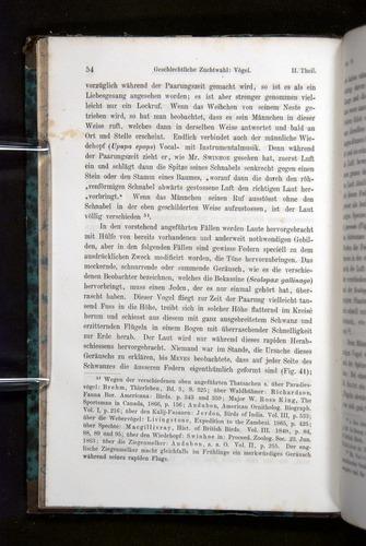Image of Darwin-F1065.2-1871-054