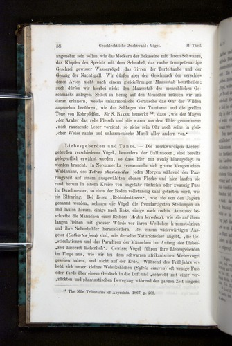 Image of Darwin-F1065.2-1871-058