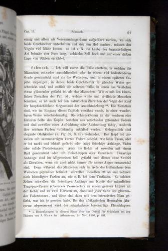 Image of Darwin-F1065.2-1871-061
