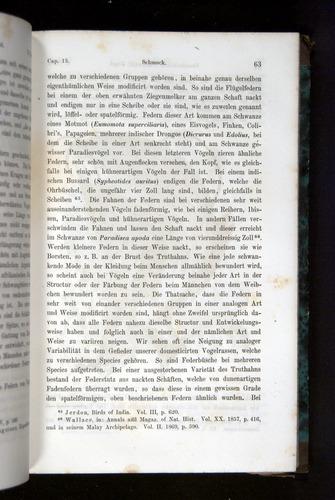 Image of Darwin-F1065.2-1871-063