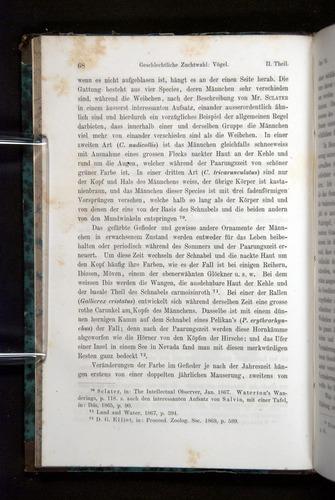 Image of Darwin-F1065.2-1871-068