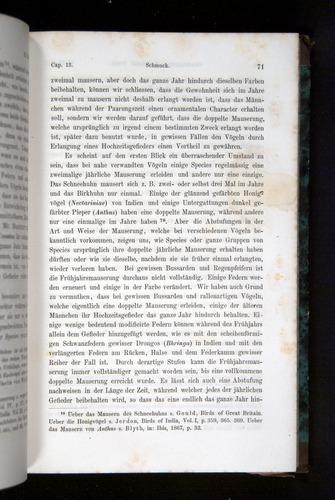 Image of Darwin-F1065.2-1871-071