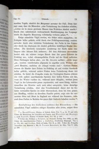 Image of Darwin-F1065.2-1871-073