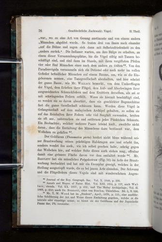 Image of Darwin-F1065.2-1871-076