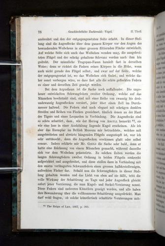 Image of Darwin-F1065.2-1871-078