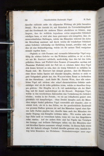 Image of Darwin-F1065.2-1871-080