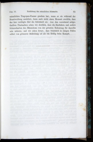 Image of Darwin-F1065.2-1871-085