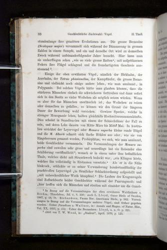 Image of Darwin-F1065.2-1871-088