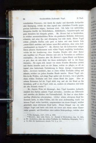 Image of Darwin-F1065.2-1871-096