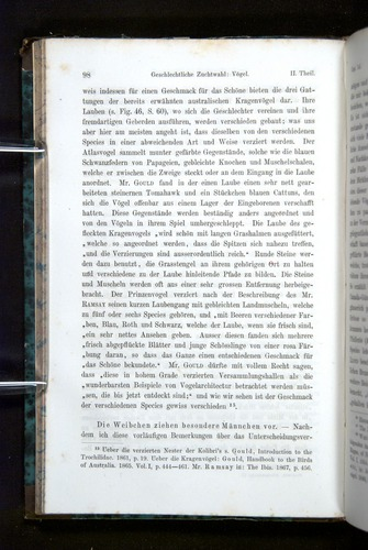 Image of Darwin-F1065.2-1871-098