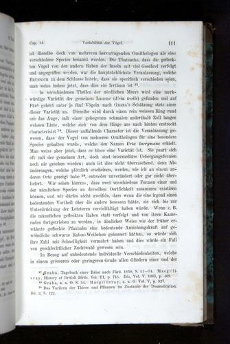 Image of Darwin-F1065.2-1871-111