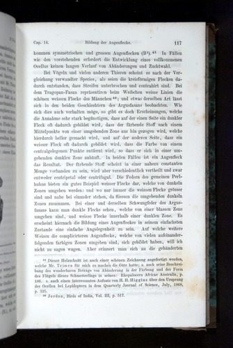 Image of Darwin-F1065.2-1871-117