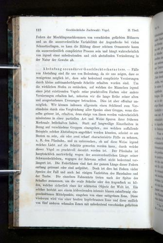 Image of Darwin-F1065.2-1871-118