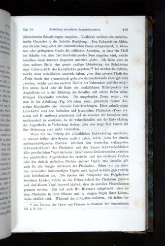 Image of Darwin-F1065.2-1871-119