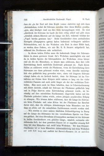 Image of Darwin-F1065.2-1871-144