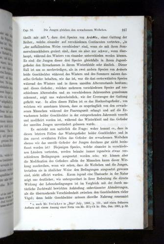 Image of Darwin-F1065.2-1871-167