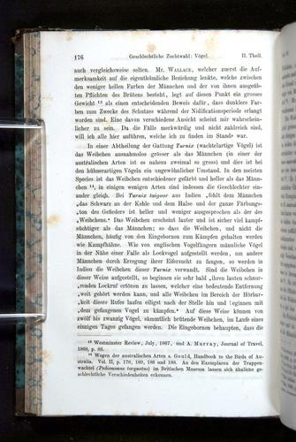 Image of Darwin-F1065.2-1871-176