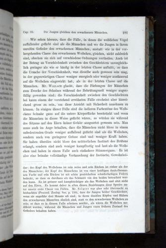 Image of Darwin-F1065.2-1871-181