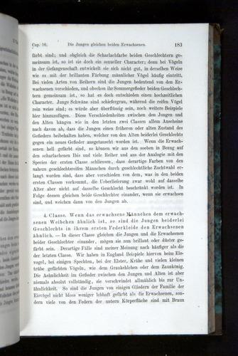 Image of Darwin-F1065.2-1871-183