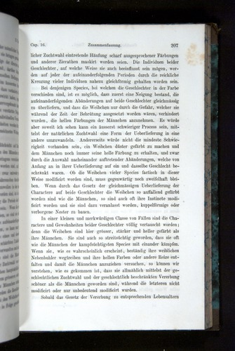 Image of Darwin-F1065.2-1871-207