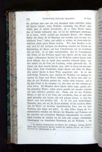 Image of Darwin-F1065.2-1871-216