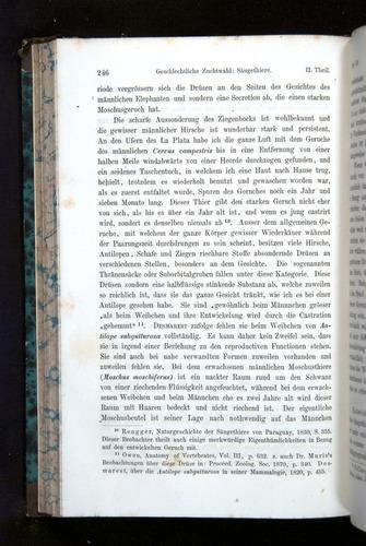 Image of Darwin-F1065.2-1871-246