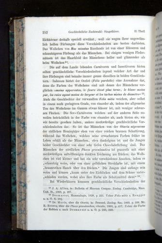 Image of Darwin-F1065.2-1871-252