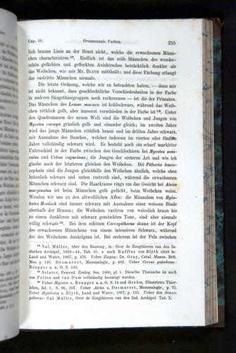 Image of Darwin-F1065.2-1871-255