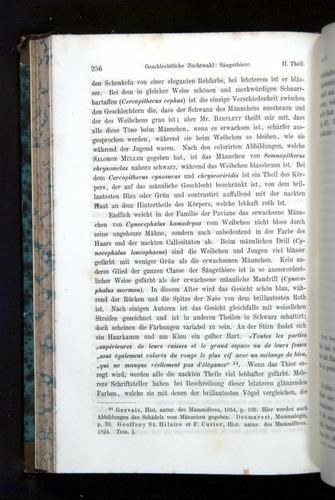 Image of Darwin-F1065.2-1871-256