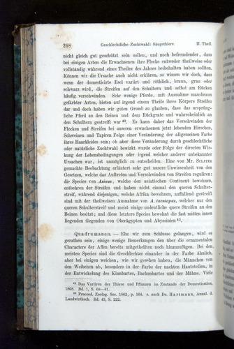 Image of Darwin-F1065.2-1871-268