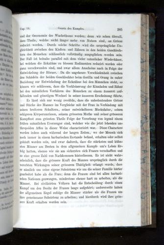Image of Darwin-F1065.2-1871-285