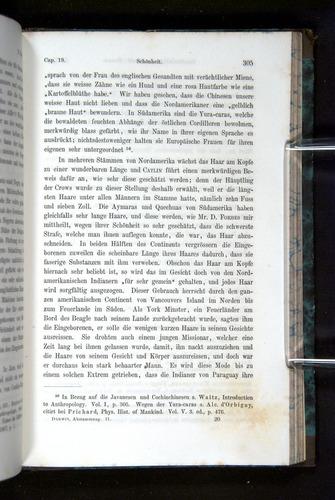 Image of Darwin-F1065.2-1871-305
