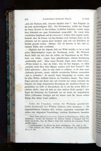 Image of Darwin-F1065.2-1871-314