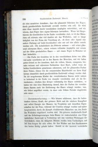 Image of Darwin-F1065.2-1871-336